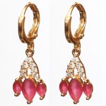 Golden Metal Earrings Red stones